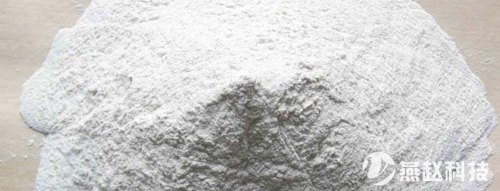 荷兰进口淀粉醚-建材级